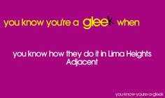 things only gleeks would understand  Gleek(s) Trolling