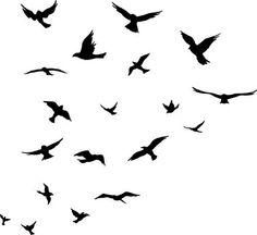Flock of Birds wall decal sticker by Arise Graphics, http://www.amazon.com/dp/B005KE038K/ref=cm_sw_r_pi_dp_PV-Rrb0CAY50G