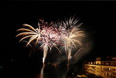 Urlaub Silvester GRAND HOTEL ZELL AM SEE, Feuerwerk, Urlaub Hotel Zell Am See, Plants, Christmas Vacation, Fireworks, New Years Eve, Weihnachten, Plant, Planting, Planets