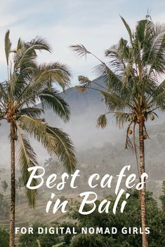 Best cafes in Bali for freelancers and digital nomads