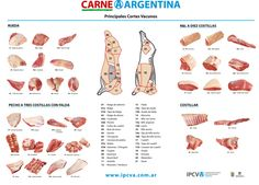 Known as the land of beef,Argentina has the world's highest consumption rate of beef, with the average consumer scarfing down a yearly average of more than 140 pounds of cow parts galore.Before we get into the nitty gritty of the best Buenos Aires restaurants to dive knife first into a juicy piece of barbecued steak, it's crucial to learn about the Argentine cuts of beef and the correct Spanish meat translation.