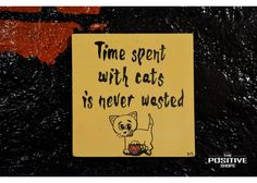 Time spend with cat is never wasted Wooden Signs With Sayings, Nature Quotes, Animal Paintings, Positivity, Hand Painted, Cats, Gatos, Pet Pictures, Cat