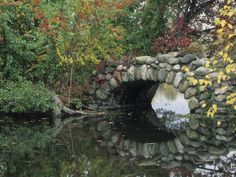 Google Image Result for http://cache2.allpostersimages.com/p/LRG/22/2244/9Q6ZD00Z/posters/merrill-john-lisa-trees-by-pond-and-stone-bridge-at-hecksher-museum-long-island-new-york-usa.jpg