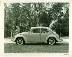 '67 Volkswagen Beetle — Quiz Results - 1967 VW Beetle
