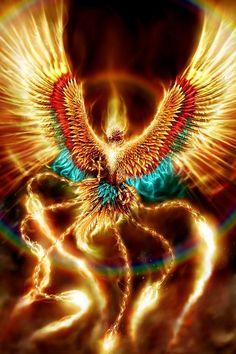November Scorpio Solar Eclipse The Phoenix Unleashed Phoenix wallpaper Phoenix images Phoenix art