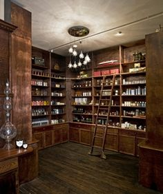 An Apothecary like this, with ladders and tons of storage, beautiful!