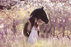 Pferd in Blumenwiese