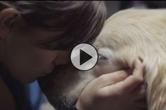 Have you seen this viral video yet?! You'll hug your dog after watching it, I promise!