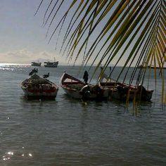 Playa Manzanillo Isla de Margarita