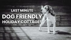 Book your last minute, dog friendly, holiday cottage getaway with Heritage Hideaways!