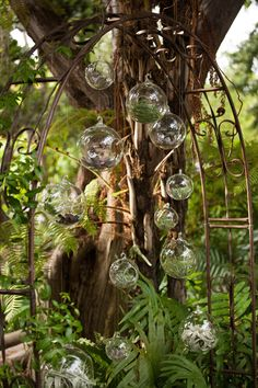 """how beautiful is this wedding: rich greens and lush floral for a """"fern gully"""" inspired look!"""