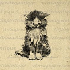Digital Image Cute Kitten Download Antique Cat Graphic Illustration Printable Vintage Clip Art. High quality digital illustration. This printable digital image is high resolution for making prints, fabric transfers, t-shirts, tea towels, pillows, and more. This digital image is high quality, large at 8½ x 11 inches. A Transparent background png version is included.