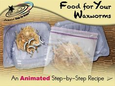 Food for Your Waxwork - Animated Step-by-Step Recipe  Available in 3 formats: Regular, SymbolStix, PCS