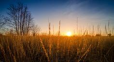 Mechelse Heide by David Jonck on 500px