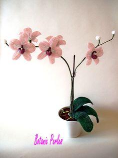 Orchidée en perles de rocaille Miyuki