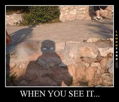 Try to find the mystery in these when you see it pictures