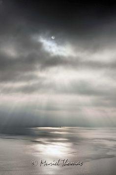 Entre ciel et eau - Muriel THOMAS