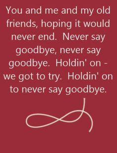 Bon Jovi - Never Say Goodbye - song lyrics, song quotes, songs, music lyrics… Song Lyric Quotes, Music Lyrics, Music Quotes, 80s Quotes, Deep Quotes, Bon Jovi Song, Jon Bon Jovi, Never Say Goodbye, 80s Songs
