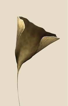 Gold and neutral make one of the best color combinations. This soft powder shade in the background perfectly matches the vintage gold of the gingko leaf. Sculptures Céramiques, Sculpture Art, Vanitas, Communication Art, Paperclay, Land Art, Magazine Art, Installation Art, Oeuvre D'art