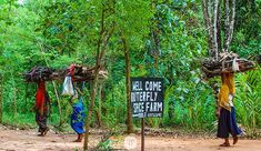 Land privatization was always a practice that I was conflicted about when I worked in international development. The multilateral development banks get off on that ish tho.  I'd be sent down by the Bank to help the government provide land titles to people in rural areas where land had been passed down from generation to generation without a problem until we arrived. The land titles were sometimes a precursor to a pressure the people to sell in the future or a land grab for a national…