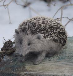 Love, love, LOVE this felted hedgehog by Natasha Fadeeva!
