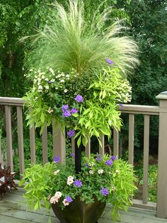 """Stem Basket tiered planter - """"Basket Column contains coral and purple verbena, lacy sweet potato vines (ipomoea), pale yellow million bells (petunias), and a centerpiece of annual grass. Container Plants, Container Gardening, Plant Containers, Container Flowers, Outdoor Plants, Outdoor Gardens, Potted Plants, Porch Plants, Garden Planters"""