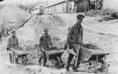 15. Mensen die verbannen worden wegens landverraad of dergelijke worden vaak naar Siberië gestuurd voor in werkkampen te werken.