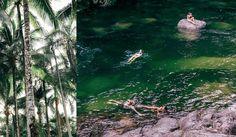 Cool change fans Port Douglas's tropical re-awakening