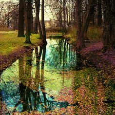 turquoise reflection