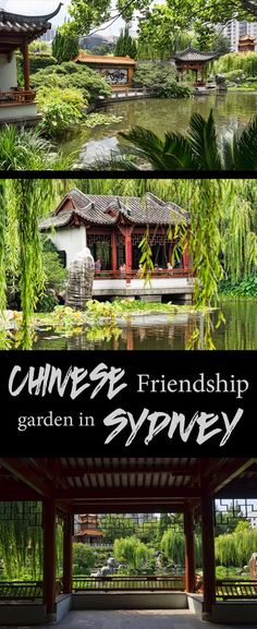 The Chinese friendship gardens are an oasis of calm in the middle of Sydney city, Australia.
