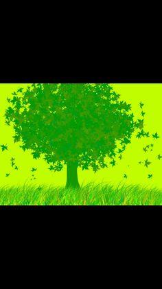 58 Northern Lights, Golf Courses, Green, Nature, Travel, Google, Colors, Naturaleza, Viajes