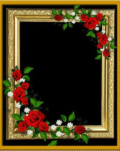 Beautiful Flowers Pictures, Beautiful Flowers Wallpapers, Beautiful Rose Flowers, Flower Pictures, Wedding Background Images, Banner Background Images, Rose Frame, Flower Frame, Flower Wallpaper