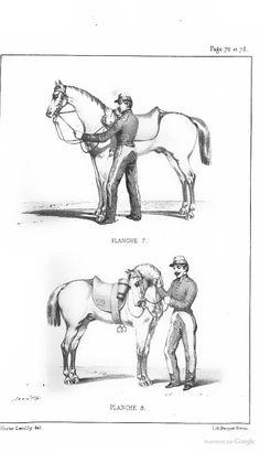 Oeuvres complètes ...: Méthode d'équitation ... - François Baucher - Google Livres