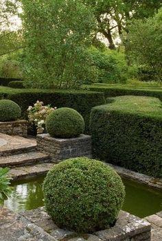 Steps to Go Through Before Residential Landscaping Modern Landscape Design, Traditional Landscape, Green Landscape, Landscape Architecture, Boxwood Garden, Garden Hedges, Topiary Garden, Residential Landscaping, Modern Landscaping