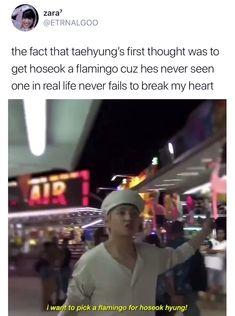 Bts Funny Videos, Bts Memes Hilarious, Bts Taehyung, Bts Bangtan Boy, Bts Dancing, Bts Tweet, Kpop, Bts Video, Bts Edits