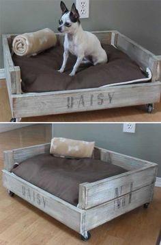 köpek köşesi dekorasyonu