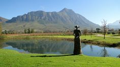 Nestled in the Tulbagh Valley, learn about modern winery Saronsberg Cellar's award-winning wines and accommodation. Saronsberg has established itself as one of SA's leading producers of Shiraz. Nordic Walking, Sculpture Garden, Wineries, Cellar, Wine Tasting, Farms, South Africa, Cape, African