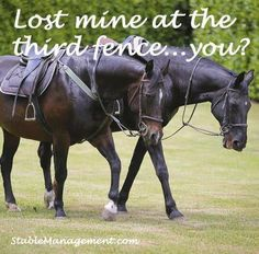 Lost mine at the 3rd fence