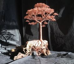 This one of a kind sculpted copper tree contains 220 strands of wire and is mounted on a beautifull piece of driftwood. The tree is all hand twisted and is held together by its own friction. Only a little superglue had been used to mount the tree on the driftwood. The leafs are made