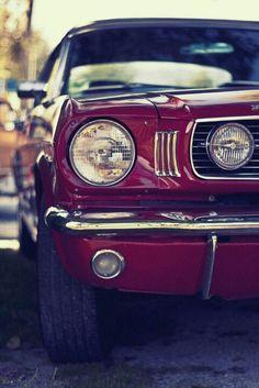 Mustang Road Trip