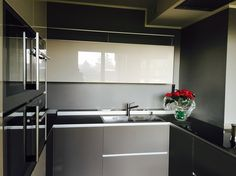 Valcucine Artematica gloss Glass with Aerius