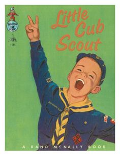 cub scout ~ Two boys were Cub Scouts, and I helped as Den Mother.