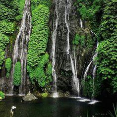 Top Ten Reasons Travelers Should Visiting Banyumala Twin Waterfall Bali Bali Waterfalls, Beautiful Waterfalls, White Sand Beach Bali, Bali Accommodation, Voyage Bali, Bali Honeymoon, Trip Advisor, Travel Advisor, Where To Go