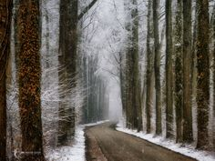 "Winter in Velhorst - Better on Black, hit the M <a href=""https://www.instagram.com/larsvandegoor/"">