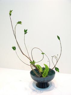 20110706 Marina Sokolenko by the ikebana shop, via Flickr