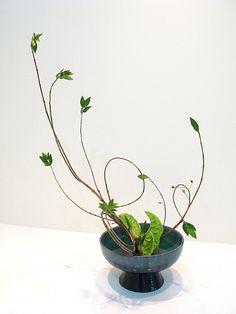 20110706 Marina Sokolenko by the ikebana shop, via Flickr