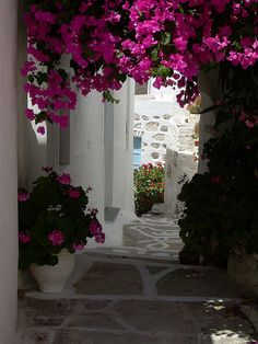 visitheworld:    Cycladic alleys in Hora, Serifos Island, Greece (by p_marco).