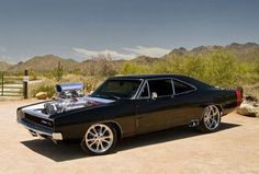 images of blown motor muscle cars | little chat with Scott Natas for your 1st steps into (the) SNAKE ...