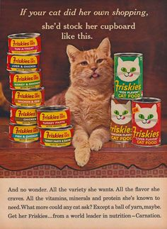 1965 FRISKIES CAT FOOD Ad Why Funky Tabby Cats by phorgotten