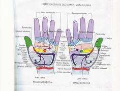 Reflexología Mapa de palma de las manos y  técnica especial.
